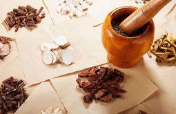 Chữa bệnh gout bằng thuốc Đông y