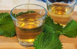 Nước lá tía tô giúp giảm cơn đau nhức gút