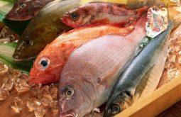 Bệnh gút ăn được cá gì